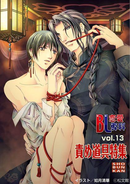 BL恋愛専科 13