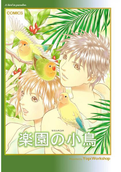 楽園の小鳥 楽園の小鳥