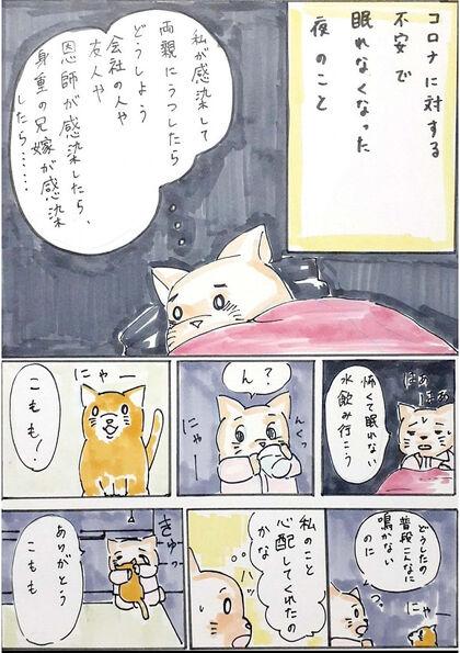 キタニ家の6匹の猫たち